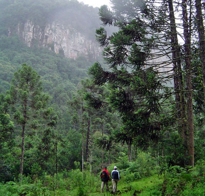 trekking_vale_da_lageana_canela_rs