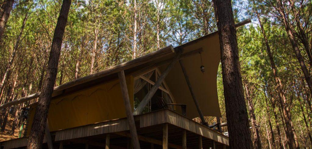Tedesco Eco Park